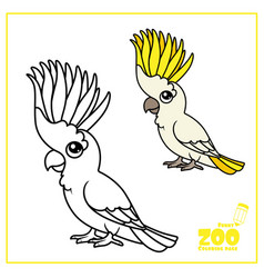 cute cartoon parrot color and outlined on a white vector image