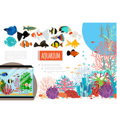 flat aquarium elements composition vector image
