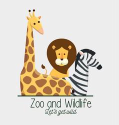 Giraffe with lion and zebra animals in the safari vector