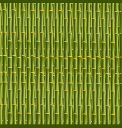 green bamboo stick pattern background vector image