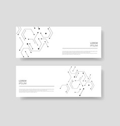 Hexagons chemical carcass and social network vector