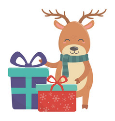 reindeer with gift boxes celebration merry vector image