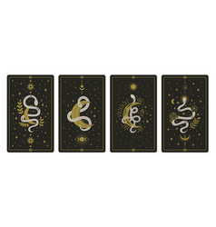 magical snakes tarot cards occult hand drawn vector image