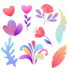 set of romantic flowers vector image