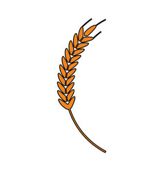 Wheat ear icon image vector