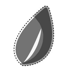 Gray leaf of plant design vector