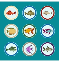 Fish on the plate icons set vector