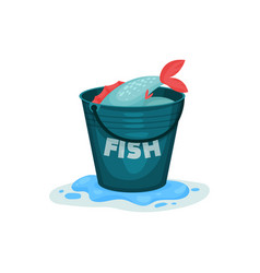 Fresh fish in stainless bucket vector