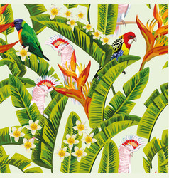 parrot in jungle green background vector image