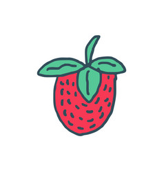strawberry drawing isolated red juicy berry on vector image