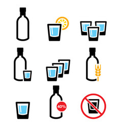 Vodka shot and bottle strong alcohol icon vector