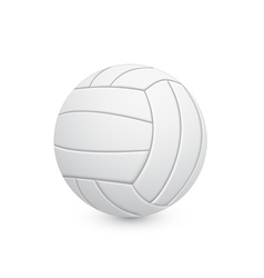 voleyball ball vector image