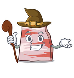 Witch pork lard mascot cartoon vector