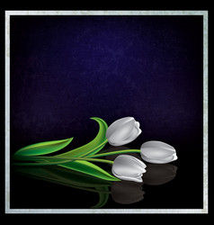 abstract blue grunge background with white tulips vector image vector image