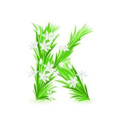 spring flowers alphabet k vector image vector image