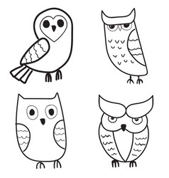 set of cute hand drawn owls vector image vector image