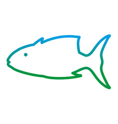 degraded line tropical tuna fish nature animal vector image