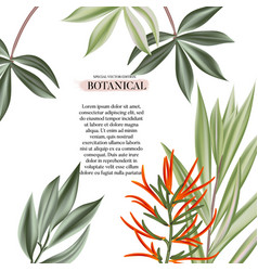 exotic flowers and leaves decoration modern vector image