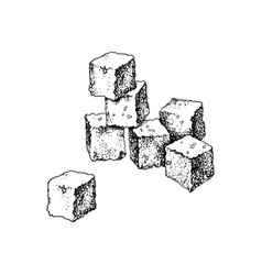 Hand drawn sugar cubes vector