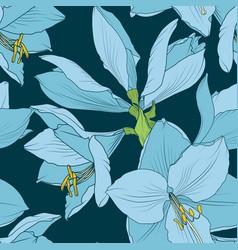 Hippeastrum amaryllis seamless pattern blue navy vector