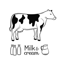 Milk and cream emblems set vector image vector image