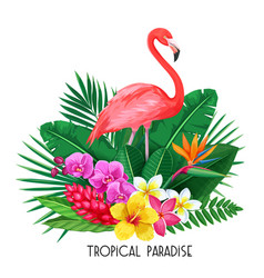 tropical banner with toucan vector image