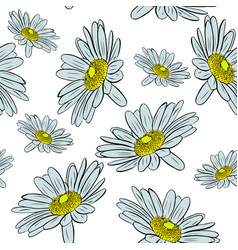 Blossoming chamomile buds seamless pattern vector