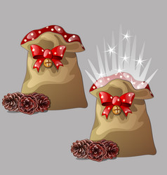 Brown magic pouch with a gift for christmas or new vector