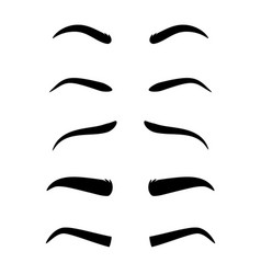eyebrow model set vector image