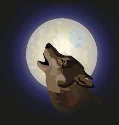 Howling gray wolf vector