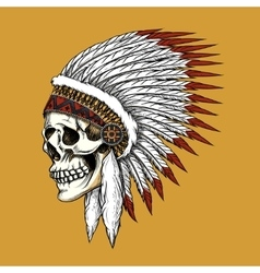 indian skull vector image