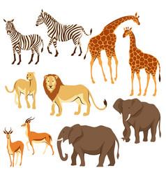 Set of african savanna animals vector