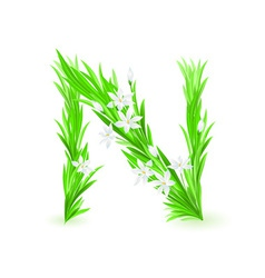 spring flowers alphabet n vector image