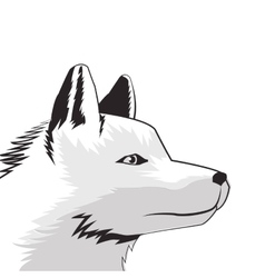 wolf drawing icon vector image