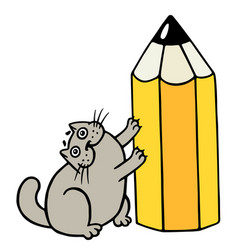 Cheerful fat cat loves pencils isolated vector