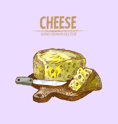 digital detailed line art sliced cheese vector image