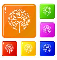 nature dandelion icons set color vector image