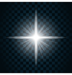 sparkle light star 10 vector image