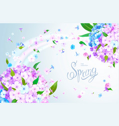 Spring background with phlox vector