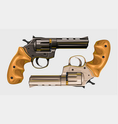 two classic revolvers on white vector image