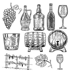 Wine set of wine bottles grape glass wood barrels vector