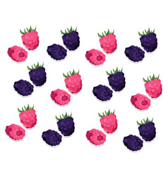 raspberry and blackberry pattern background vector image vector image