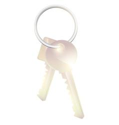 two metal keys vector image