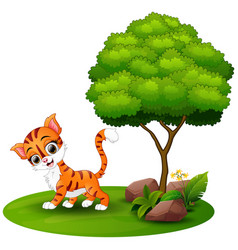 cartoon cat under a tree on a white background vector image
