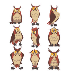 Collection great horned owls birds characters vector