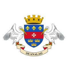 Flag of saint-barthelemy france vector