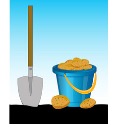 Pail of the potatoes and shovel vector
