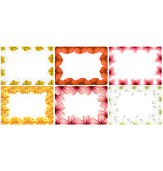 set flower border vector image