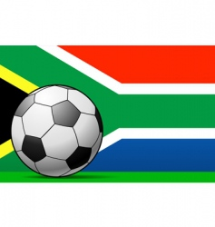 south african football vector image