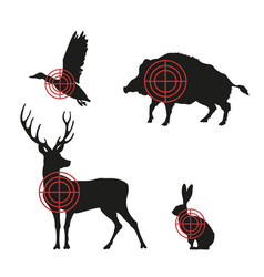targets with black silhouettes animals vector image